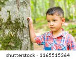 sad boy in the forest near a... | Shutterstock . vector #1165515364