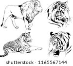 Set Of Vector Drawings On The...
