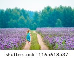 woman runs in the field with... | Shutterstock . vector #1165618537