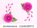 dahlia ball barbarry and petals ... | Shutterstock . vector #1165638571