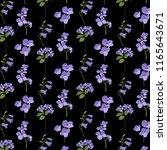 avender purple botanical on... | Shutterstock .eps vector #1165643671