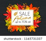 seasonal hello fall poster with ... | Shutterstock .eps vector #1165731337