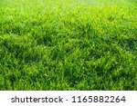urban photography  a lawn is an ... | Shutterstock . vector #1165882264
