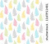 fern frond herbs  tropical... | Shutterstock .eps vector #1165911481