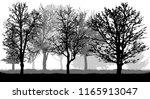 silhouette of bare trees.... | Shutterstock .eps vector #1165913047