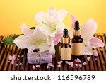 spa concept in orange | Shutterstock . vector #116596789