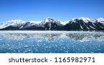 glacier bay alaska reflections... | Shutterstock . vector #1165982971