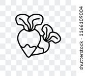 radish vector icon isolated on... | Shutterstock .eps vector #1166109004