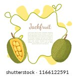 jackfruit poster with frame and ... | Shutterstock .eps vector #1166122591