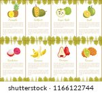 pineapple and jackfruit ... | Shutterstock .eps vector #1166122744