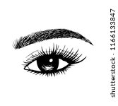woman eyes with long eyelashes. ...   Shutterstock .eps vector #1166133847