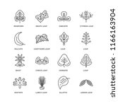 set of 16 simple line icons... | Shutterstock .eps vector #1166163904