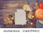 autumn background  pumpkins ... | Shutterstock . vector #1166194411
