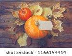 autumn background  pumpkin ... | Shutterstock . vector #1166194414
