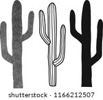 Vector Black And White Cacti Set