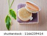 brush for dry body massage  ... | Shutterstock . vector #1166239414