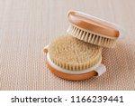 brush for dry body massage  ... | Shutterstock . vector #1166239441