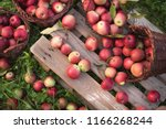 red apples in baskets and boxes ... | Shutterstock . vector #1166268244