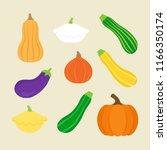 seasonal squash  gourd... | Shutterstock .eps vector #1166350174