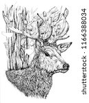 deer in the forest  ink... | Shutterstock . vector #1166388034