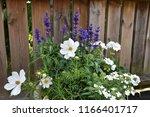 summer flower decoration in a... | Shutterstock . vector #1166401717