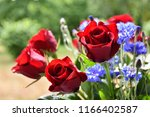 beautiful red roses in a... | Shutterstock . vector #1166402587