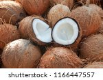 coconut cut in half and whole... | Shutterstock . vector #1166447557
