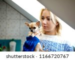 young woman with her chihuahua... | Shutterstock . vector #1166720767