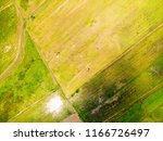 aerial view of farm and field ... | Shutterstock . vector #1166726497