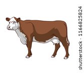 brown cow on white background.... | Shutterstock .eps vector #1166825824
