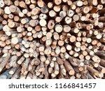 firewood  small firewood  stack ... | Shutterstock . vector #1166841457