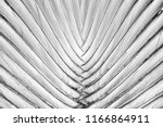 abstract background  striped of ... | Shutterstock . vector #1166864911