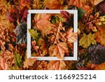 creative layout made of autumn... | Shutterstock . vector #1166925214