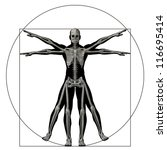 high resolution vitruvian human ... | Shutterstock . vector #116695414