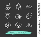 set of vitamin icons line style ... | Shutterstock . vector #1167088681