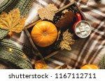 autumn still life from tray... | Shutterstock . vector #1167112711