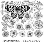 collection of hand drawn... | Shutterstock .eps vector #1167172477