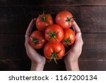 Fresh Tomatoes In Hands On A...