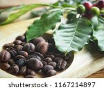 coffee beans roasted and plant | Shutterstock . vector #1167214897