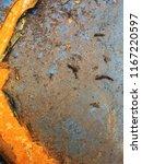 the old metal barrel. rusty old ... | Shutterstock . vector #1167220597