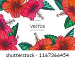 vector vintage background with... | Shutterstock .eps vector #1167366454