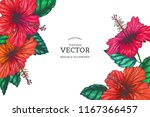 vector vintage background with... | Shutterstock .eps vector #1167366457