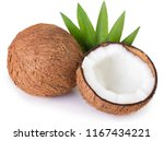 coconut isolated on white... | Shutterstock . vector #1167434221