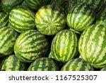 fresh green striped watermelon...   Shutterstock . vector #1167525307