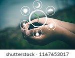 factors in planting trees to... | Shutterstock . vector #1167653017