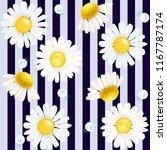 chamomile. chamomile striped... | Shutterstock .eps vector #1167787174