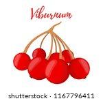 vector red berries on stem  ... | Shutterstock .eps vector #1167796411