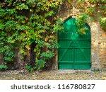 Door And Bright Green Ivy In...