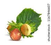 fresh  nutritious  tasty...   Shutterstock .eps vector #1167846607