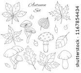 hand drawn vector autumn set... | Shutterstock .eps vector #1167854434